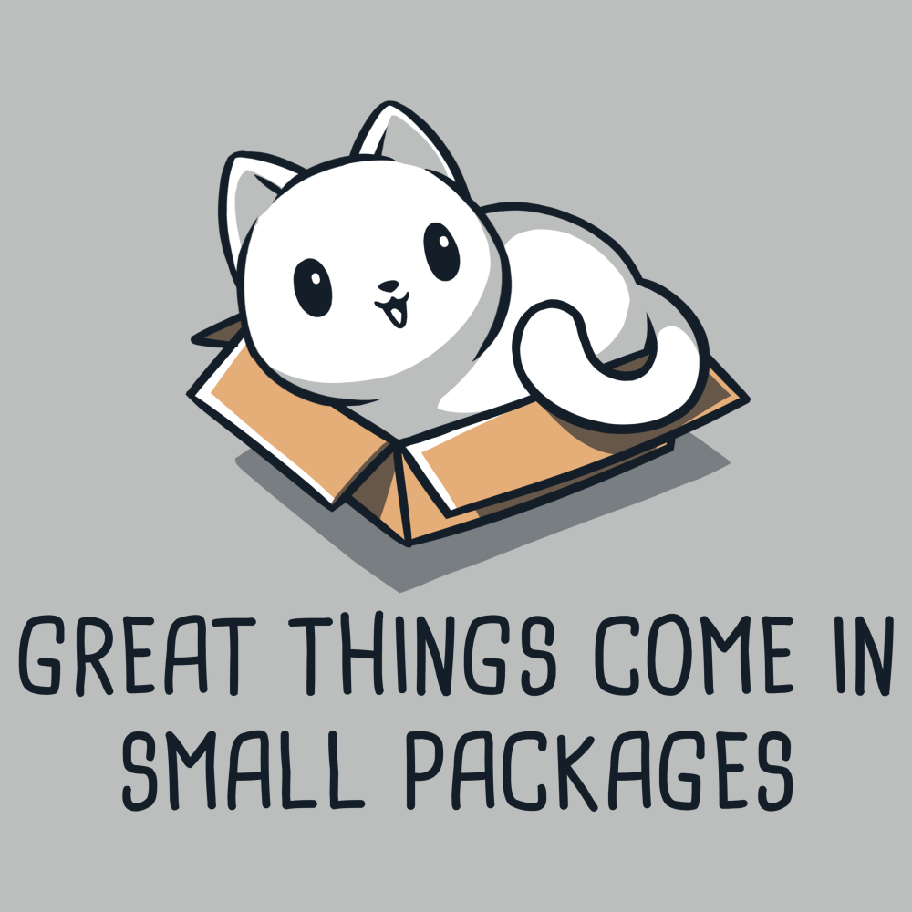 Great Things Come in Small Packages t-shirt TeeTurtle silver t-shirt featuring a smiling white cat sitting in a brown box