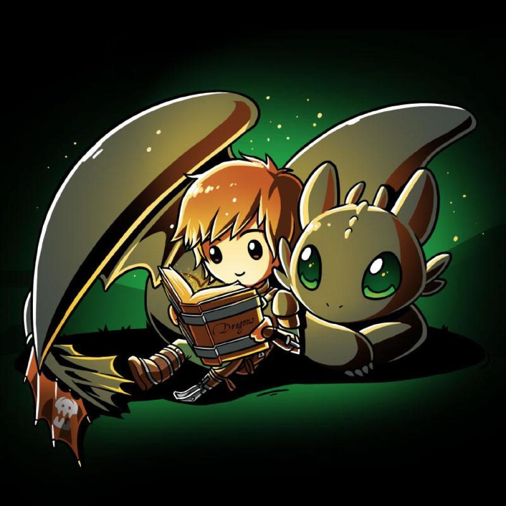 Bedtime Story t-shirt How To Train Your Dragon TeeTurtle