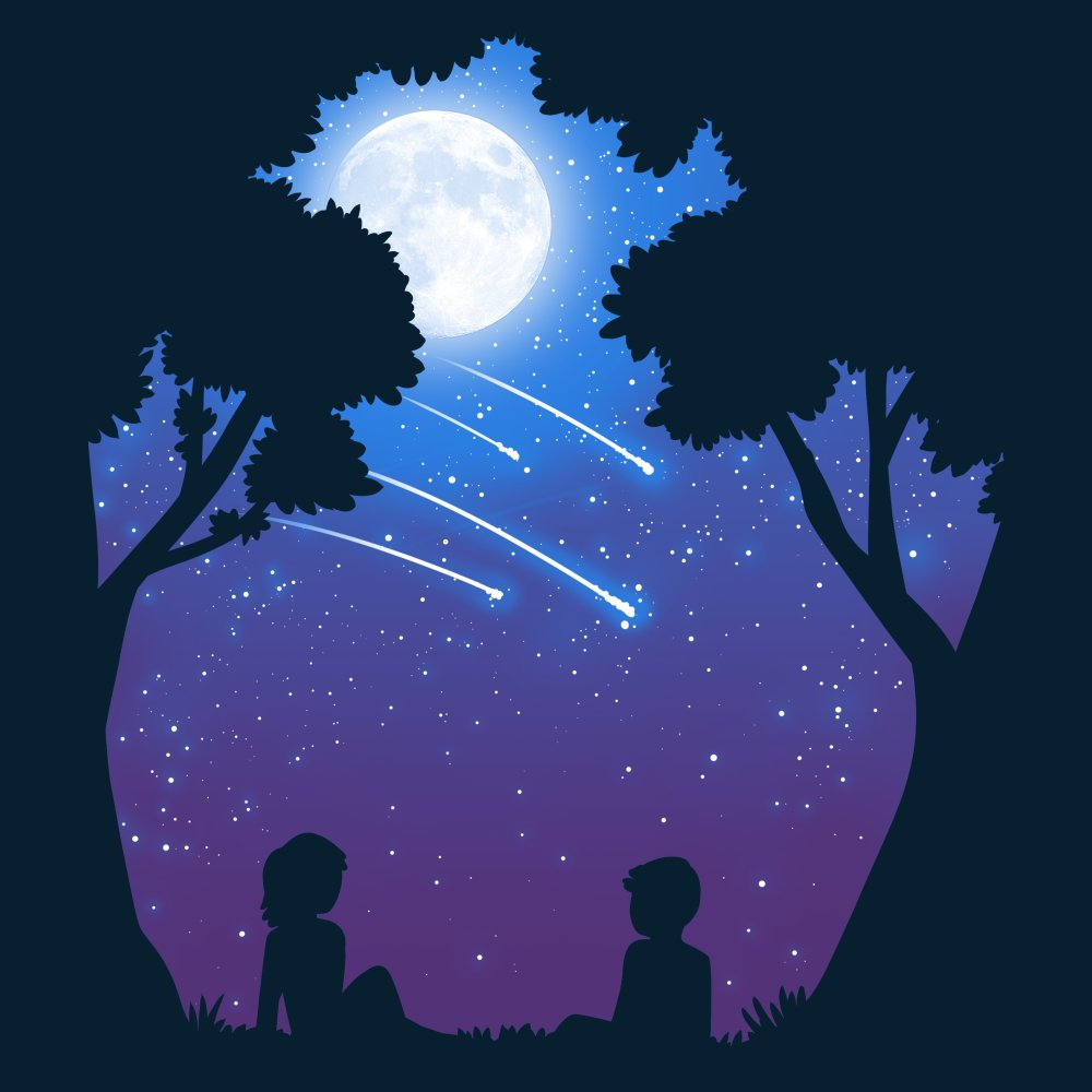 Stargazing T-Shirt TeeTurtle black t-shirt featuring the silhouettes of two people sitting underneath trees watching shooting stars