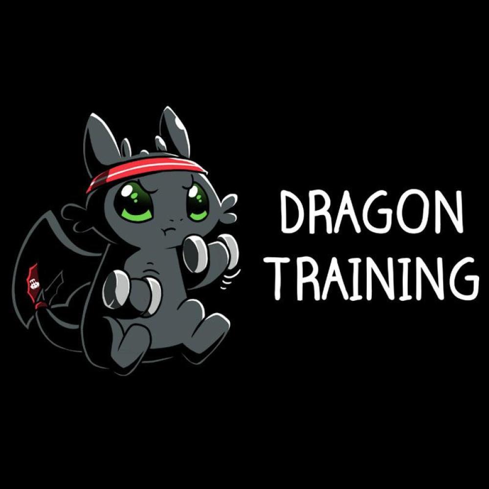 Dragon Training T-Shirt How To Train Your Dragon TeeTurtle