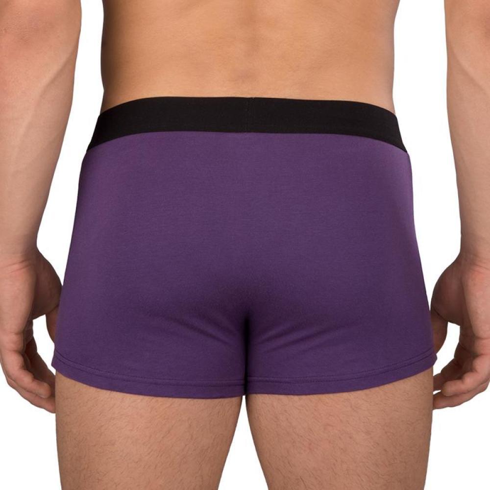 Unicorn Underwear Model TeeTurtle
